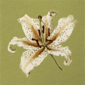 Oriental Lily on Pale Green Elizabeth Bradley Tapestry Kit