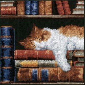 Cat Sleeping on Bookshelf Counted Cross Stitch Kit by Vervaco