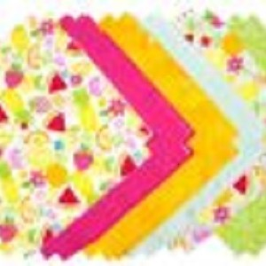 Pink House Shaggy Quilt Kit